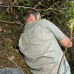A specialist Kiwi handler on Tutukaka Coast