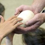 Non fertile Kiwi egg being shown to students